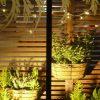 2F Night Garden